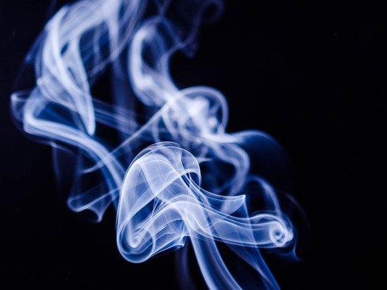 Эксперты предупредили о резком росте российского рынка нелегальных сигарет