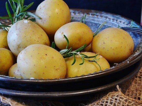 Мясников указал на главную ошибку при приготовлении картофеля