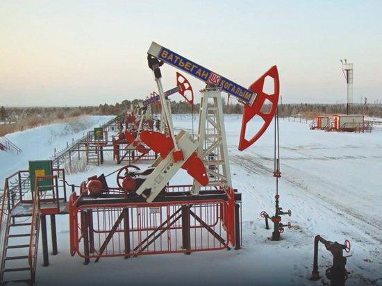 Российской нефти хватит лишь на 58 лет, заявил глава Роснедр