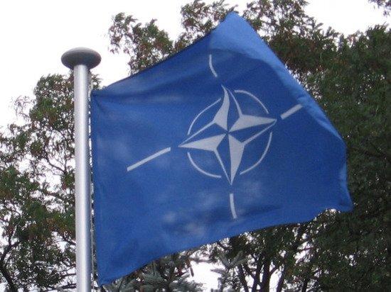 В Германии заявили, что вступление Украины в НАТО не на повестке дня