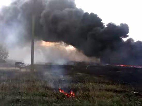 """Голландские журналисты получили """"телефонные записи"""" по катастрофе """"Боинга"""" в Донбассе"""