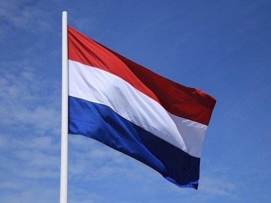 Денонсация налогового соглашения с Нидерландами одобрена российским правительством