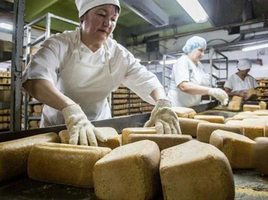 За качеством хлеба готовы следить новые контролеры