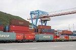FESCO осуществила первую интермодальную отправку рыбопродукции из России в Германию