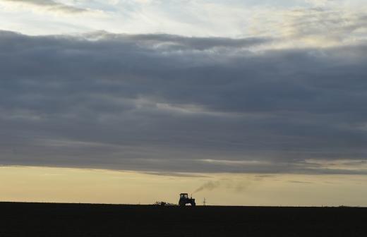Росреестр разработал проект об упрощении оформления прав на землю