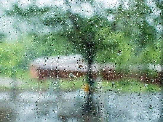 Гидрометцентр: погода в первую неделю мая будет переменчивой