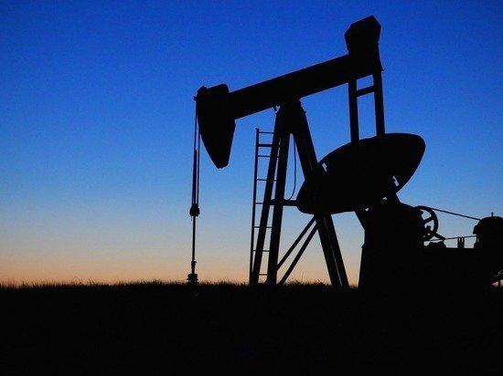 Названы сроки полного истощения в России запасов углеводородов
