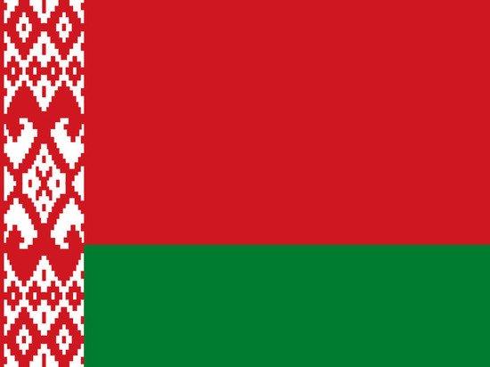 Белоруссия обратилась к Литве с просьбой допросить бывшего президента