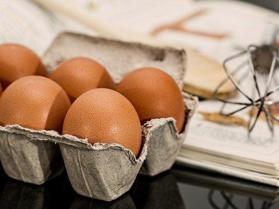 В Россельхознадзоре сообщили о важности импорта яиц для вакцин