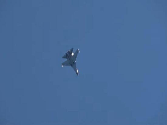 NI смоделировал бой между Су-35 против американских F-35
