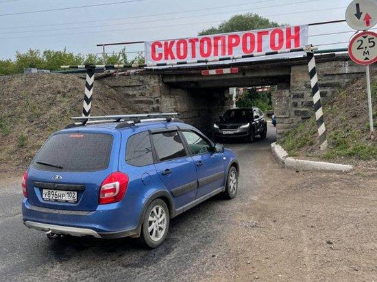 Активисты попросили Путина отремонтировать дорогу в Уфе, пожаловавшись на чиновников