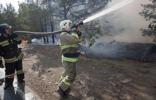 Правительство выделит свыше 2,5 млрд рублей на борьбу с лесными пожарами