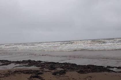 Жители Сахалина обнаружили нефтепродукты на берегу моря