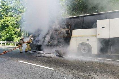 Столкнувшиеся под Сочи автобусы везли детей