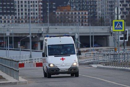 В российском регионе автобус врезался в дерево