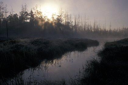 Трое малолетних братьев пропали на реке в Приморье