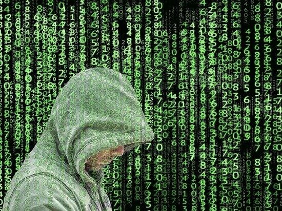 В США обвинили «связанных с Россией» хакеров в кибератаках на Kaseya