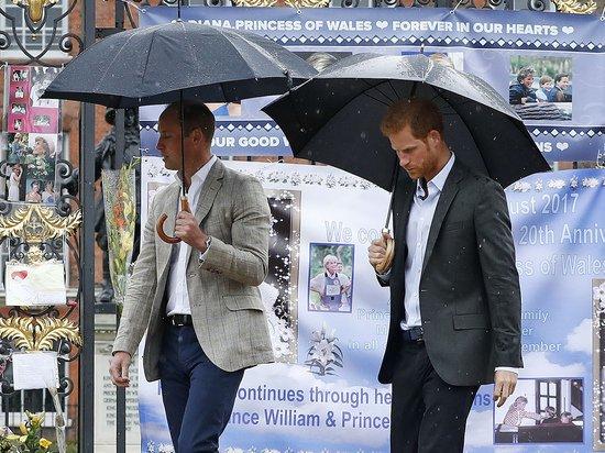 Биограф прокомментировал слухи о психическом здоровье принца Гарри