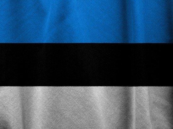 Власти Эстонии пообещали «симметричный ответ» на высылку консула из России