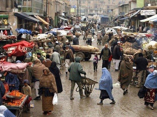 Талибы пообещали бороться с производством и контрабандой наркотиков