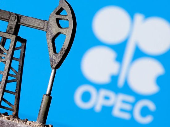 Страны ОПЕК+ не смогли договориться: что будет с рублем