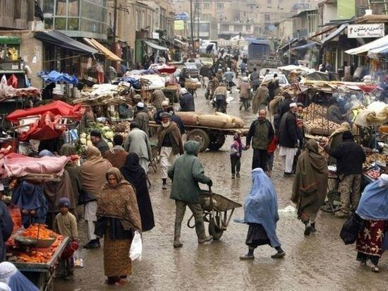 Жириновский считает, что в будущем талибы возглавят Афганистан