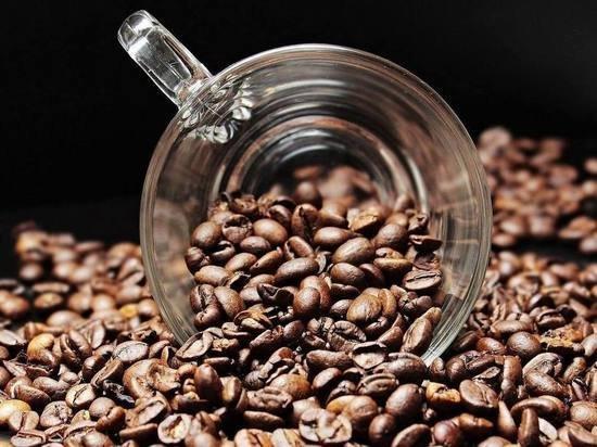 Садоводам раскрыли секрет использования кофейной гущи: урожай обеспечен