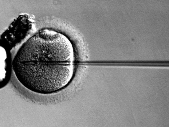 Две женщины модельной внешности обвинили российскую клинику в краже эмбрионов