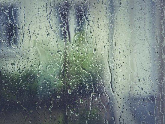 Дожди, грозы и град прогнозируют в Москве в четверг