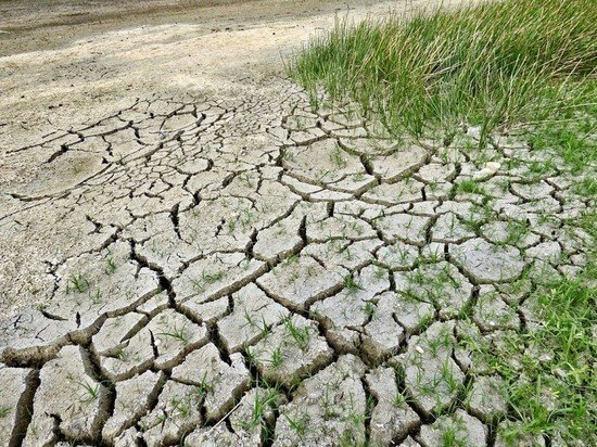 Российский ученый предупредил, что аномально жаркие периоды участятся