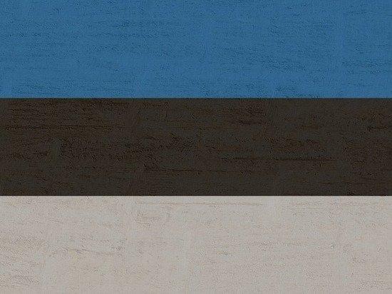 Эстония объявила персоной non grata российского дипломата