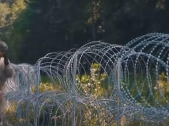 Россия ответила Литве на обвинения в причастности к наплыву мигрантов