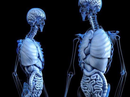 ВОЗ анонсировала исчезновение трех видов рака в ближайшие десятилетия