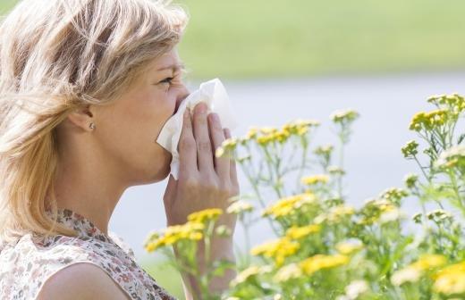 Врачи рассказали о способах отличить сезонную аллергию от COVID-19