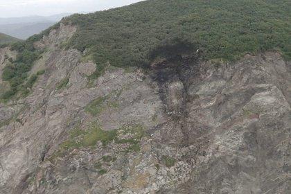 В авиакомпании прокомментировали посадку разбившегося на Камчатке Ан-26