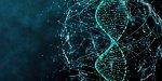 Утвержден перечень приоритетных сервисов и цифровой инфраструктуры экосистемы цифровых транспортных коридоров ЕАЭС
