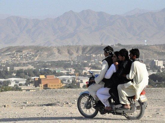 МИД: талибы более договороспособны, чем афганское правительство