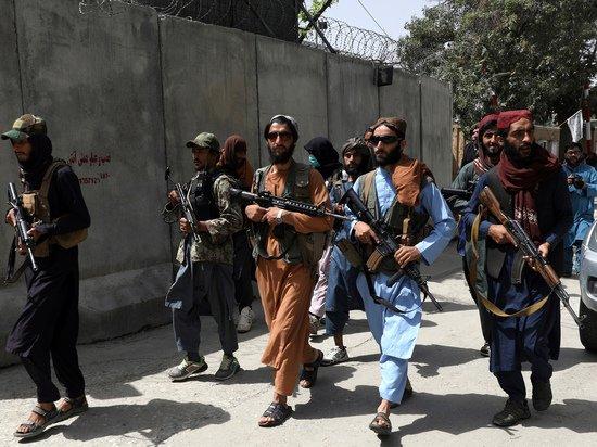 Мураховский объяснил опасность талибских переносных зенитных комплексов