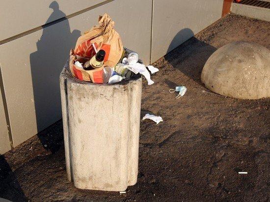 Аксенов назвал катастрофической ситуацию с мусором в Крыму