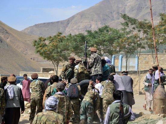 Талибы призвали покончить с окопавшимися в Панджшере