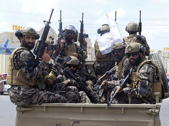Американские расисты поддержали «Талибан»