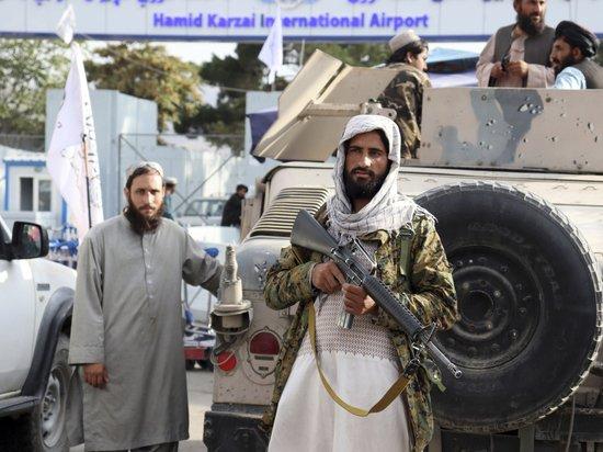 Талибы назначили главой Центробанка человека без образования