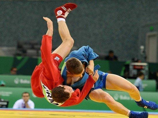 Предположение Лаврова о похищении российских спортсменов США прокомментировали в Госдуме
