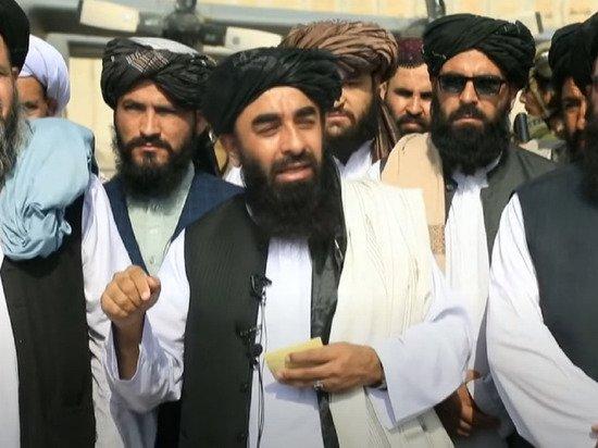 Сопротивление Панджшера заявило о присоединении «Аль-Каиды» к «Талибану»