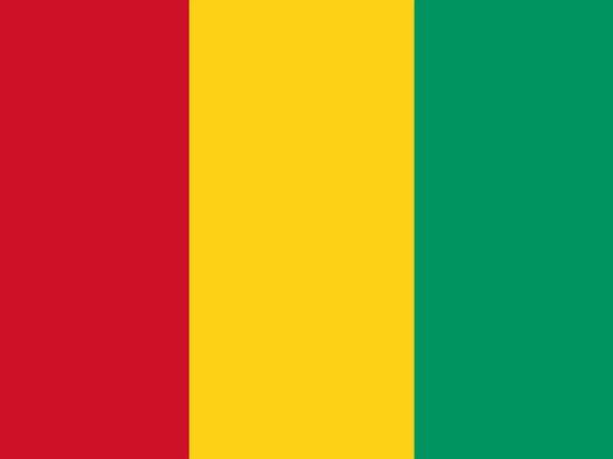 Посольство призвало россиян в Гвинее не покидать дома