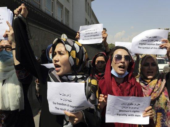 Талибы выпороли освещавших акцию протеста журналистов