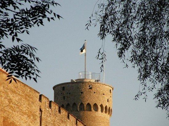 Минобороны Эстонии: учения
