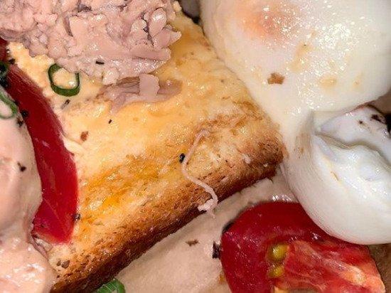 Российскую синхронистку накормили червями в московском ресторане