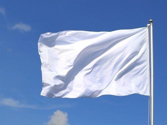 Талибы подняли белый флаг над президентским дворцом