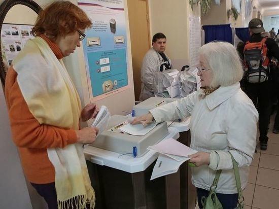 Общественная палата открыла горячую линию по нарушениям на выборах